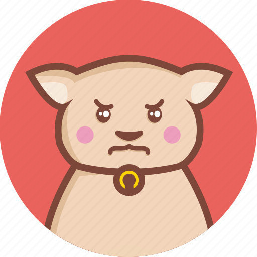 angry, animal, avatar, cat, circle, expression icon