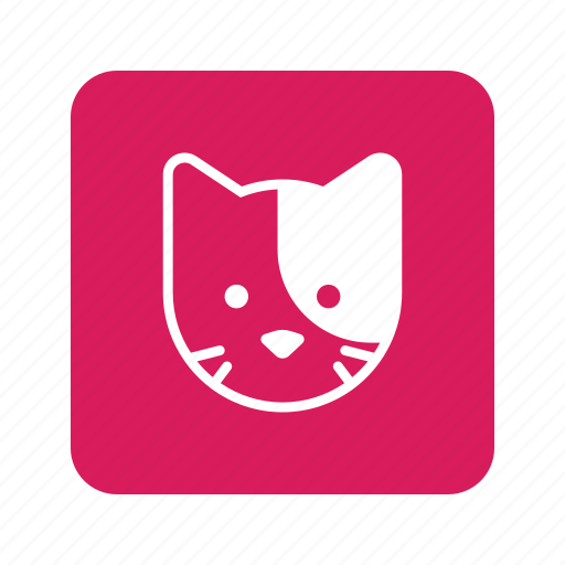 animal, cat, cute, face, head, kitty, pet icon