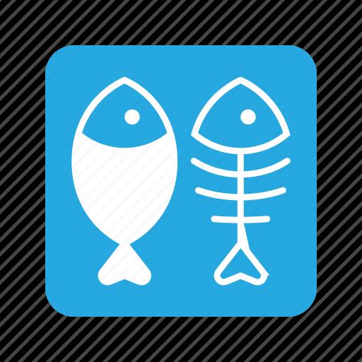 Animal, cat, eat, fish, fish bone, food, pet icon - Download on Iconfinder