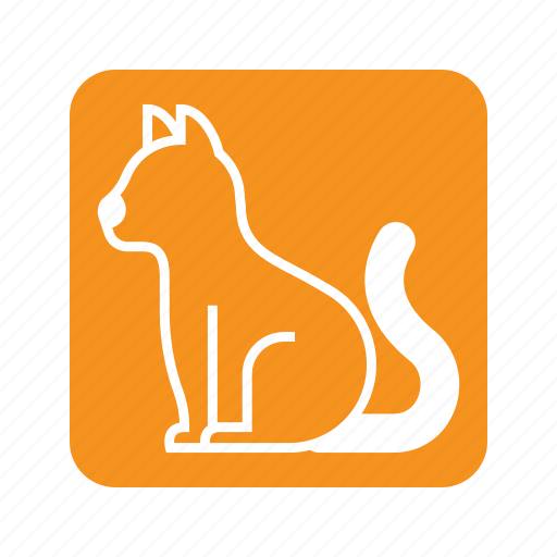 animal, cat, kitty, pet, pose, side view, sit icon