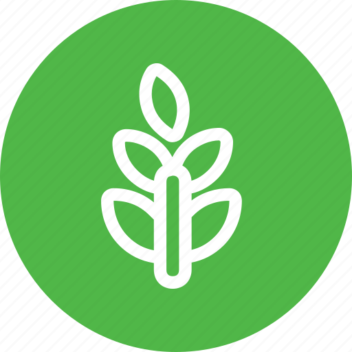 agriculture, green, grow, leaf, nature, plant, tree icon