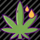cannabis, marijuana, oil