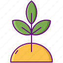 growth, nature, organic, plant icon