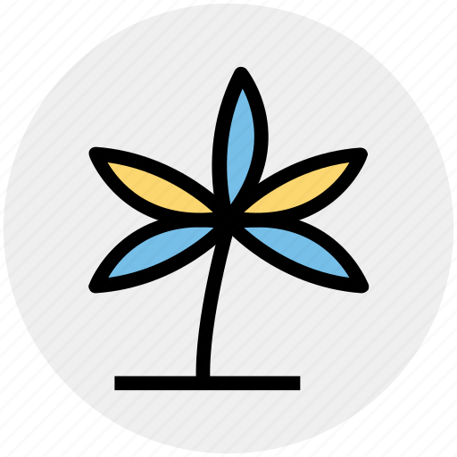 Anemone, eco, flower, nature, spring flower icon - Download on Iconfinder