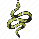 snake, animal, wildlife, skin, reptile, dangerous, venom