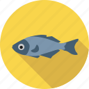 animal, environment, fish, food, ocean, sea icon
