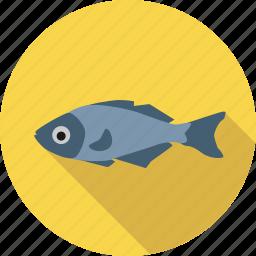 animal, environment, fish, food, ocean, sea icon