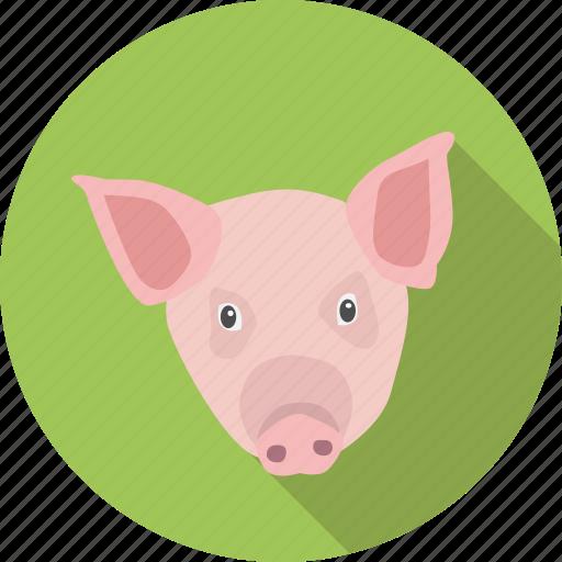 animal, domestic, mamal, pig, pork icon