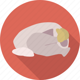 chicken, food, meat, poultry, raw food, restaurant icon