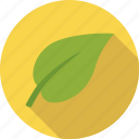 eco, ecology, environment, green, leaf, organic, plant, vegan, vegetarian icon