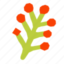 berry, plant, hand, drawn, abstract icon