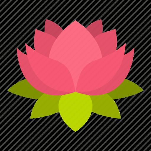 blossom, floral, flower, lotus, nature, petal, plant icon