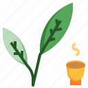 garden, green, leaf and leafe, leaves, tea