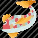 carps, fish, fortune, oriental, tradition icon
