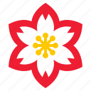 china, flora, floral, flower, plum blossom