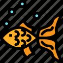 celebration, chinese, goldfish, new year icon