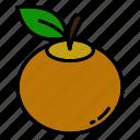 fruit, orange, fresh
