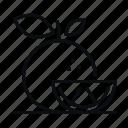 tangerine, fruit, food, chinese new year