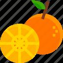 fruit, healthy, juicy, orange, organic, slice, sweet