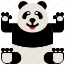 animal, bear, china, cute, panda