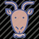 chinese, goat, ram, zodiac, chinese new year, cny, lunar new year