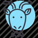 chinese, goat, zodiac, ram