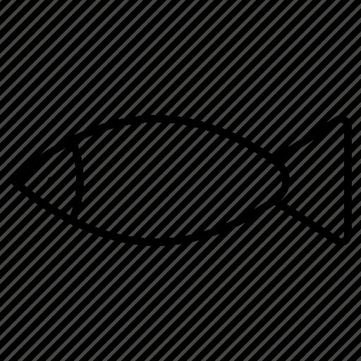 fish, sea, shark, water icon