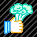 broccoli, vegetable, overweight, people, diabetes, disease