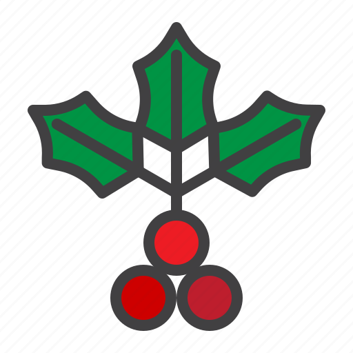 branch, cristmass, holly, leaf, mistletoe icon