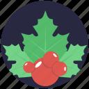 christmas plant, holly berries, ilex branch, mistletoe, twig icon