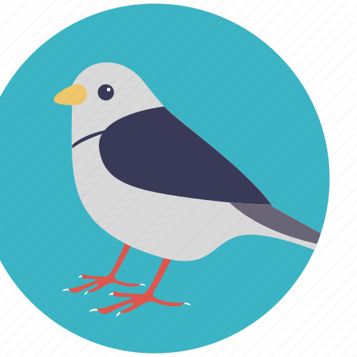 bird, dove, holy bird, lovebird, peace symbol icon