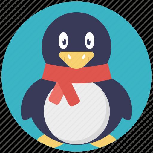 christmas animal, christmas penguin, holiday penguin, penguin icon