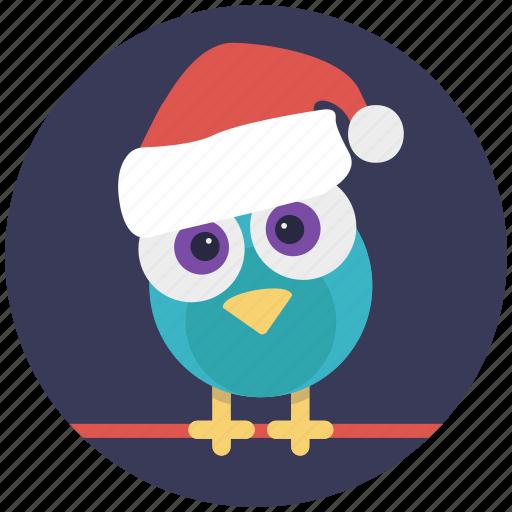 christmas bird, dove, holy bird, lovebird, peace symbol icon