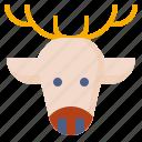 animal, christmas, deer, reindeer, winter icon