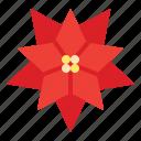 christmas, flower, plant, poinsettia icon