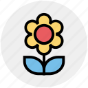 plant, flower, nature, leaves, pot, christmas icon