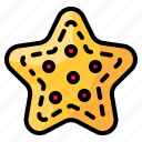 favorite, interface, rate, shapes, signs, star icon