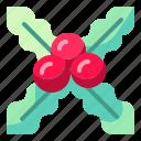cristmas, decoration, mistletoe, nature, ornament icon