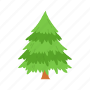 decoration, christmas tree, pine tree, tree