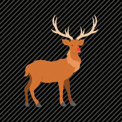 deer, red nose, reindeer, rudolph icon
