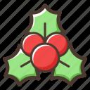berry, christmas, decoration icon