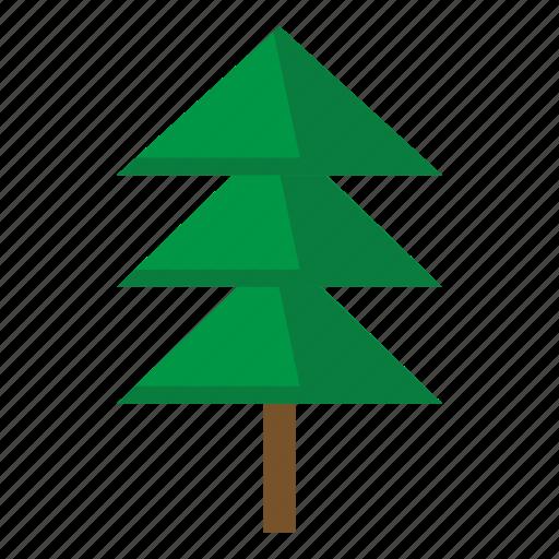 christmas, fir, tree icon