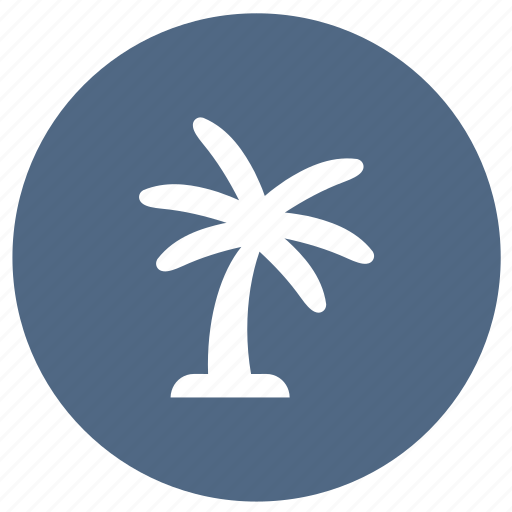 coconut palm, coconut tree, palm, summer icon
