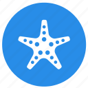 animal, animals, star, star fish, summer icon