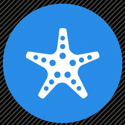 animal, animals, star, star fish, summer icon