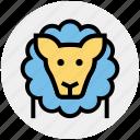 animal, animal show, circus, circus animal, circus lion, lion, performance