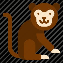 animal, monkey icon
