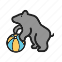 animal, bear, circus, face, fun, show icon