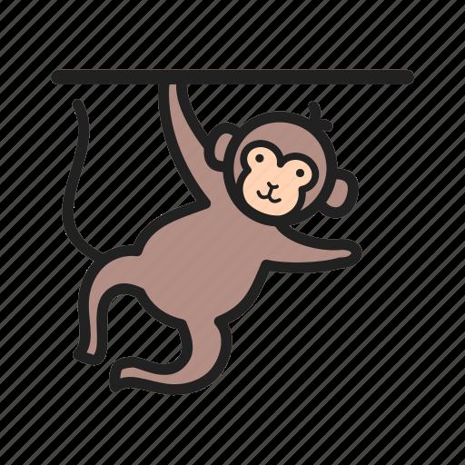 animal, circus, face, fun, monkey, show icon