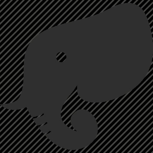animal, elephant, mammal, safari icon